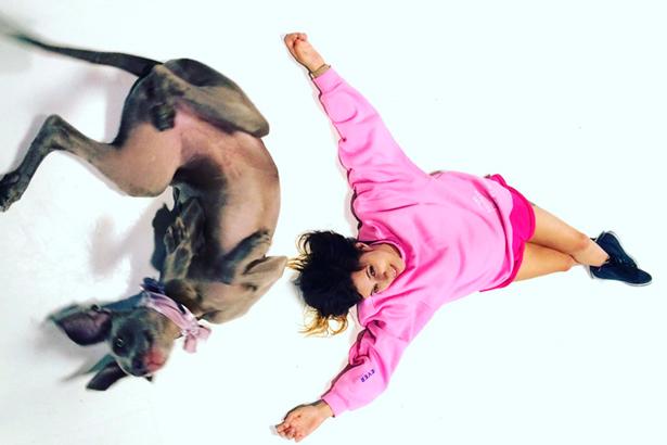 Diana Niepce, com a sua cadela Nina, sempre em constante aprender