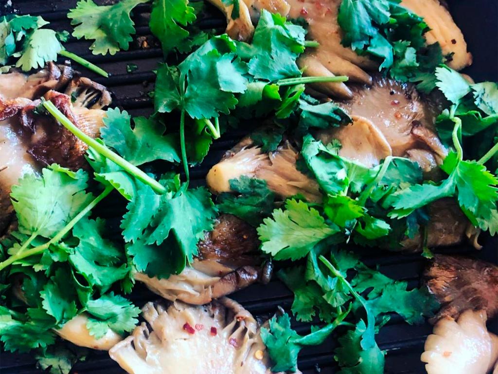 Cogumelos Pleuros, Receitas