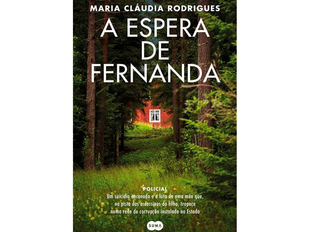 """""""Comove-me a extraordinária capacidade que as mães possuem de levar tudo à frente por causa de um filho"""", Cláudia Rodrigues A-espera-de-fernanda-julia"""
