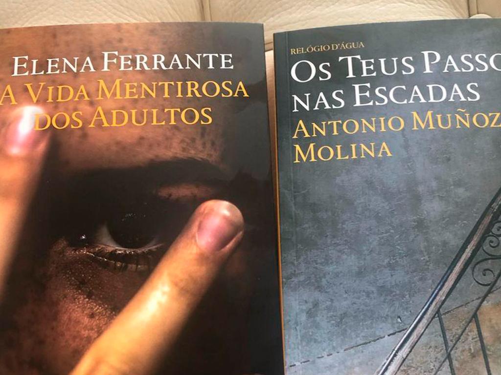 Dois livros Novos - Ferrante ou Molina?