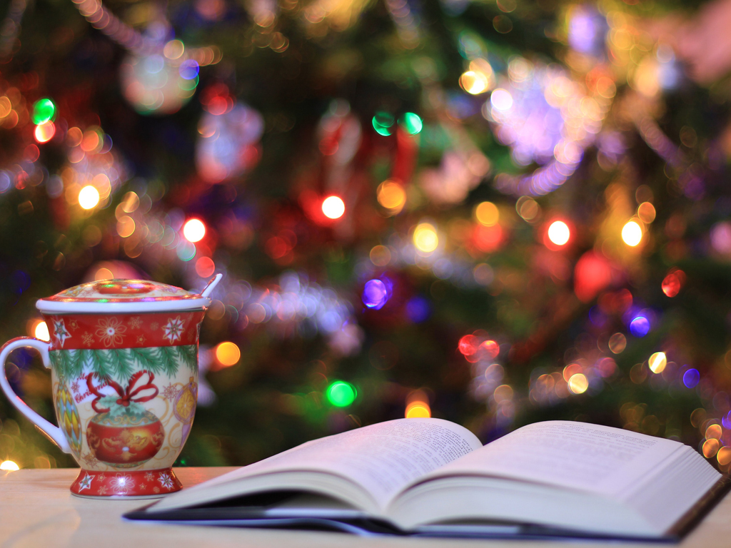 Livro Natal